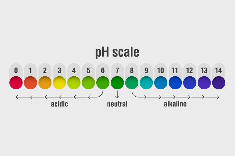 high alkilinity